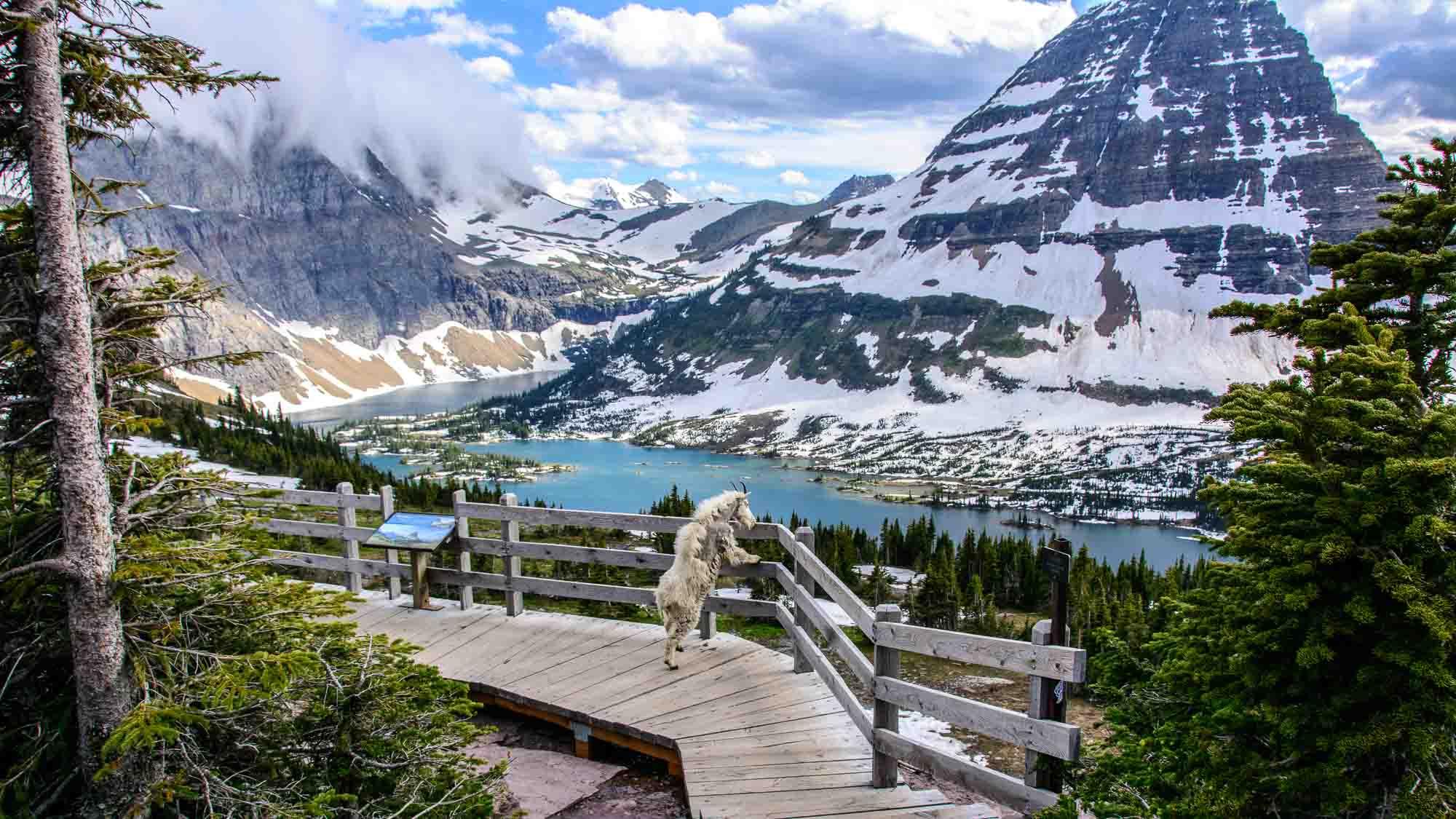 Glacier National Park Views Homes For Sale